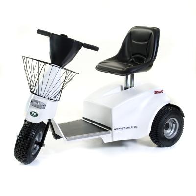 GreenCar, S.L. Carros de Golf