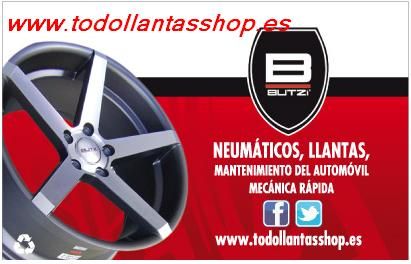 Neumáticos Torrevieja, S.L.