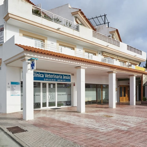 Clínica Veterinaria Jesús, S.L.