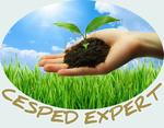 Logo Cesped Expert