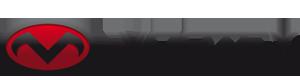 Logo Vortex Creations