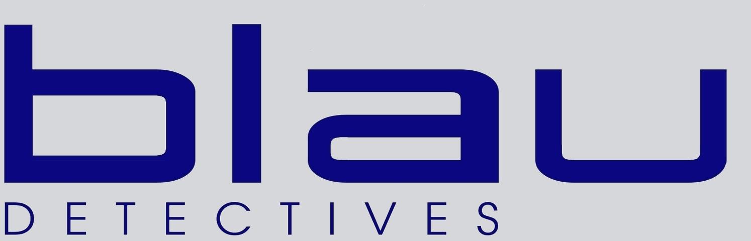 Logo Blau Detectives