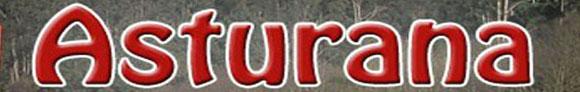 Logo Astur-Ana