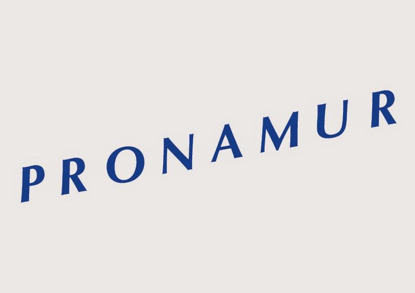 Logo Pronamur Construcción, S.L.U.