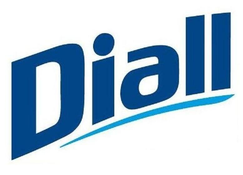 Logo DIALL Díaz Allende, S.L.